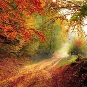 Bentornato autunno, ma il 21 o il 23 settembre?