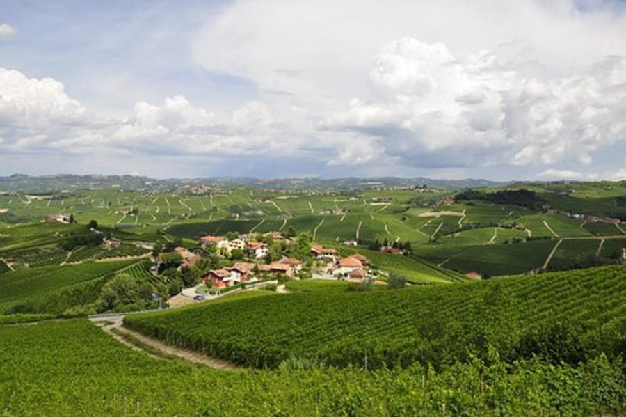 Torino-Piemonte World Food Capital, verso una nuova Food Valley