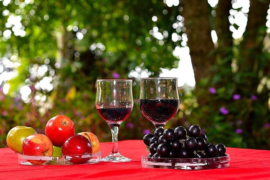 Moro dal Castel, il vino simbolo di Castelnuovo del Garda